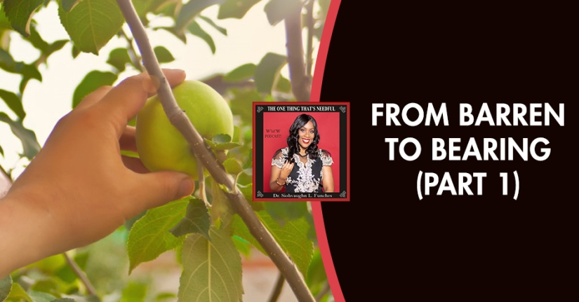 TOT 18 | Bearing Fruits